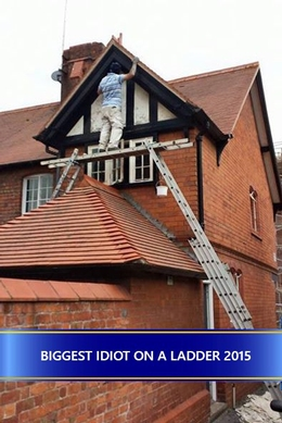 The biggest idiot on a ladder
