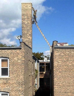 Ladder training course offered to 'ladder idiot'.