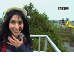 BBC covers us putting up the light on the UK's tallest Christmas tree