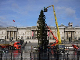 Facelift put up the most important Christmas decorations in the country