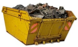 Skip firm owner disqualified for aiding revoked operator