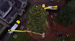 Lighting Up The UK's Tallest Christmas Tree