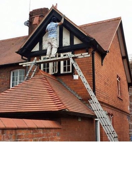 Winner of Idiot on Ladder picture competition announced