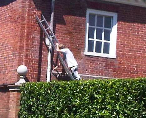 Picture of Ladder safety training needed