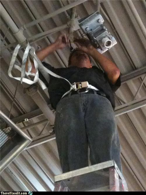 Picture of Rogue safety harness