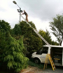 Step ladder and extension ladder training course required